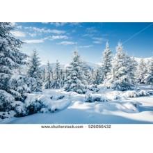 Зимний пейзаж полный каталог