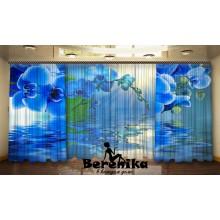Фотопортьеры Синий цвет орхидей