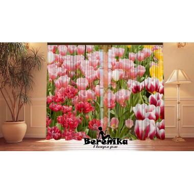 Фотошторы Весенние тюльпаны