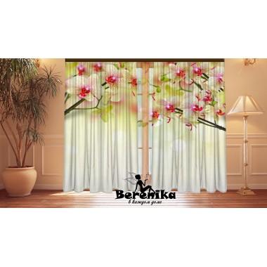 Фотошторы Восточные орхидеи