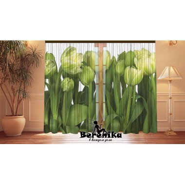 Фотошторы Зеленые тюльпаны