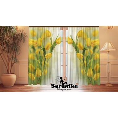 Фотошторы Воздушные тюльпаны