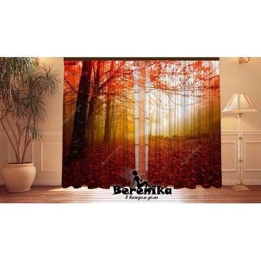 Фотошторы Красная осень