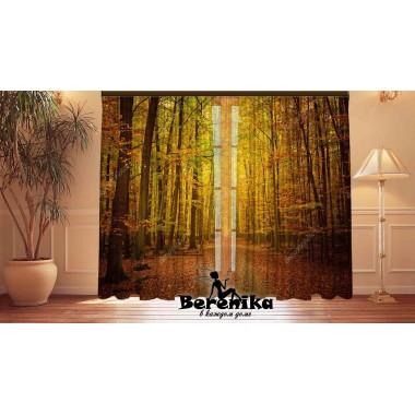 Фотошторы Осень в лесу 2