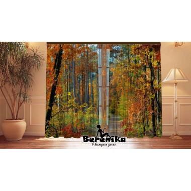Фотошторы Осенний лес 2