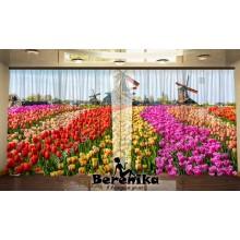 Панорама Весенние 10