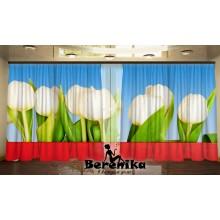 Панорама Праздничные тюльпаны