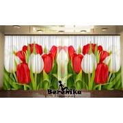 Панорама Праздничные тюльпаны 2
