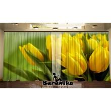 Панорама Желтые тюльпаны
