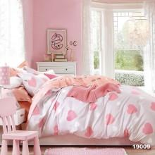 Комплект постельного белья 19009