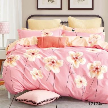 Комплект постельного белья 17172