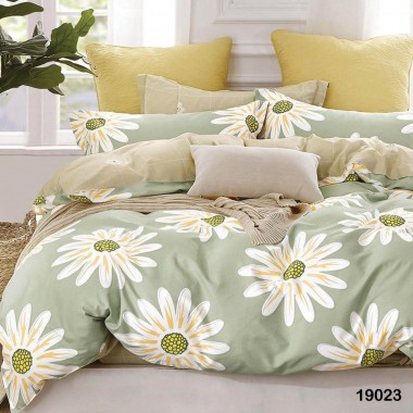 Комплект постельного белья 19023