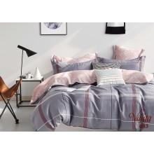 Комплект постельного белья 483
