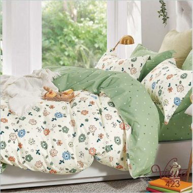 Комплект постельного белья 423