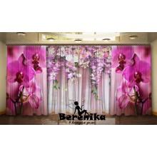 Комплект Асорті із орхідей
