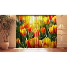 Фотошторы Солнечные тюльпаны