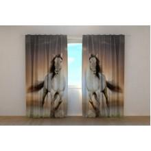 Фото штори Два коня